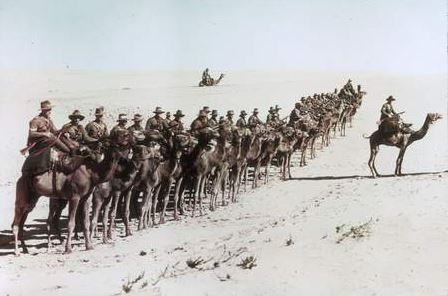 Camel Corps aussies.jpg